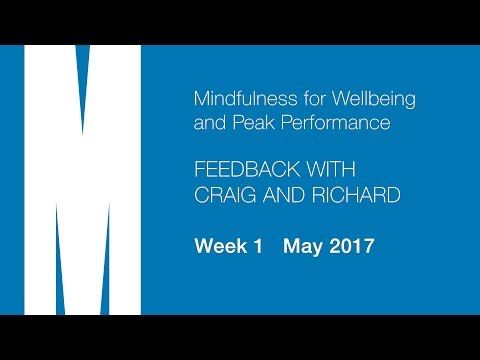 Feedback from Craig and Richard - Week 1 - May 2017