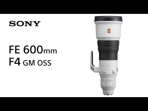 Sony | Lens | FE 600mm F4 GM OSS | Product Feature