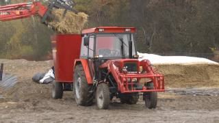Wóz paszowy Sano TMR Profi skróciło połowę czas pracy, a krowy sązadowolone i jedzą z apetytem.