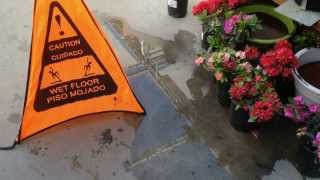 The Danger of Wet Floors