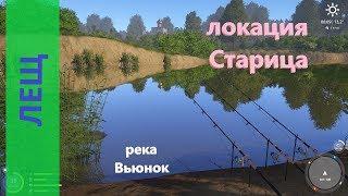 Русская рыбалка 4 река Вьюнок Лещ на длинной яме