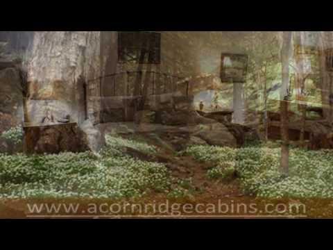 Acorn Ridge Cabins - Rent It Today
