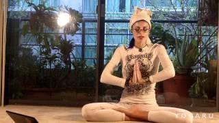 йога лекции видео