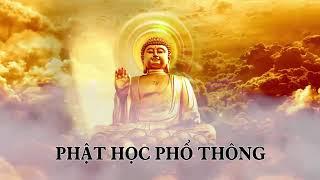❤22 tập Phật học phổ thông phần 21❤