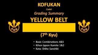 Grading Summary: Yellow Belt (Cadet)