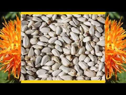 Растение сафлор полезные свойства Применение и выращивание
