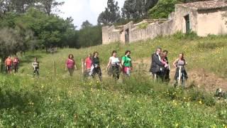 Em Belas realizou-se uma Caminhada Solidária que terminou com uma visita à Quinta do Bonjardim. Este video da Saloia TV, a Televisão da Nossa Terra, oferece-lhe...