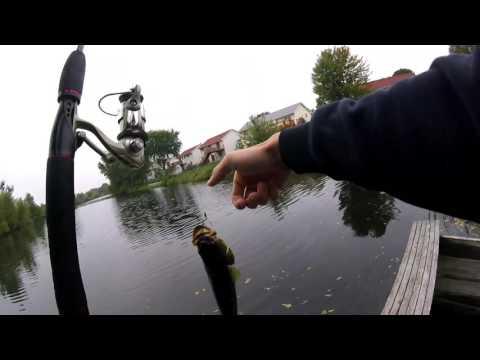 Blaine Mn Pond Fishing