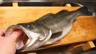 スズキのさばき方と刺身~How to filet Japanese sea perch and sashimi