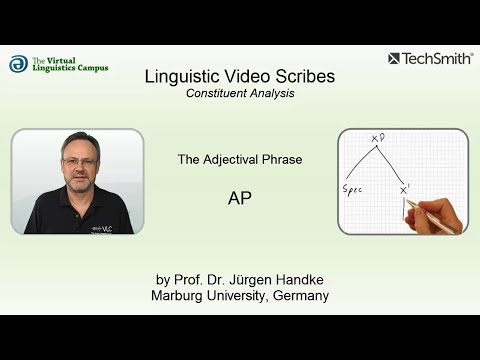 Linguistic Video Scribes - Constituent Analysis: The AP