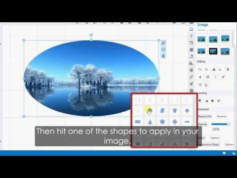 Focusky Tutorial: Apply Different Appearance Shapes for Your Images