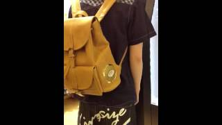видео Сумки и рюкзаки с колонками Fidelity