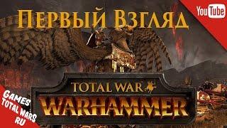 Total War: Warhammer - ПЕРВЫЙ ВЗГЛЯД!