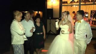 Отзыв со свадьбы. Ведущий Виталий Астанин.