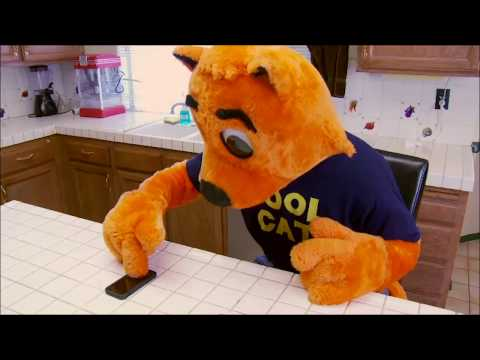 """The entire Cool cat movie but every time someone says """"Cool Cat"""", it gets faster"""