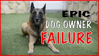 Dog Owner Failure with a Malinois  Working Dogs Should Not Be Owned by Everyone