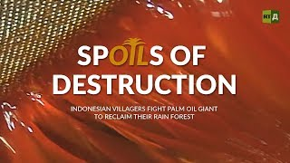 Spoils of Destruction. Indonesian villagers fighting palm oil giants to reclaim their rainforest