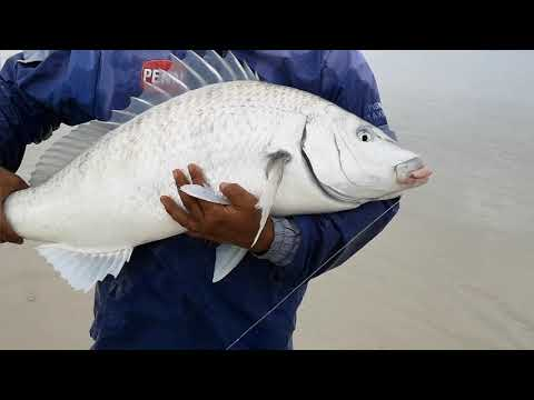 Fishing Overberg - Obk Rasspl - catch and release