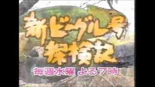 ヴィクトリア、木曽路(忘年会・武庫川店開店告知)、T&Mカラオケ/チャー...