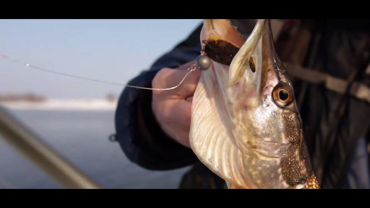 Graphiteleader VIVO - Андрей Питерцов (Зимняя рыбалка МР ...