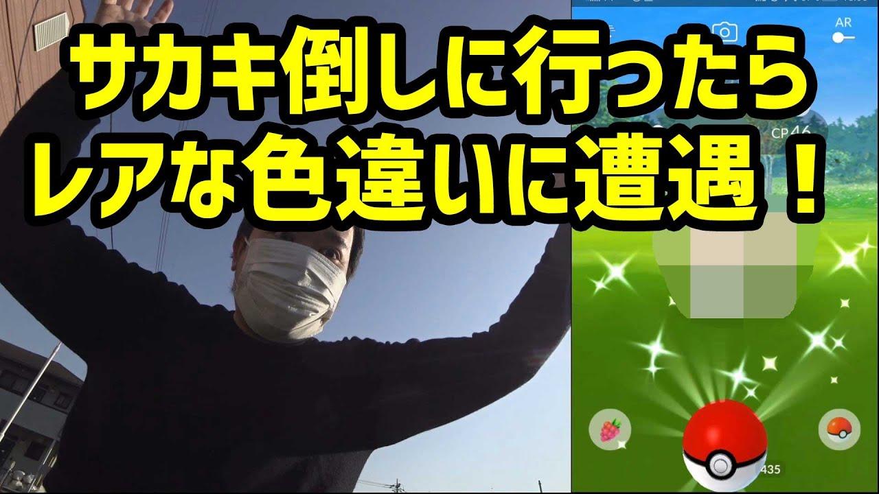 ポケモンgo サカキ 6月