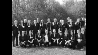 Singsucht - Ars Musica Ochtendung; Ein Vogel wollte Hochzeit machen, Satz: Volker Wangenheim