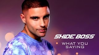 shide boss what you saying pyar kiya to nibhana bollywood remix