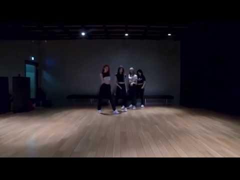 BLACKPINK「 '뚜두뚜두 (DDU-DU DDU-DU)」DANCE 反転