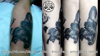 "Таймлапс тату - ""Собака"" | Timelapse of Tattoo -  Dog"