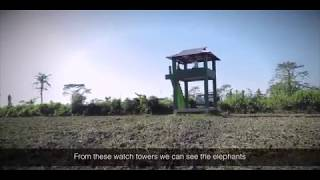 Anti-crop Depredation Watch Tower
