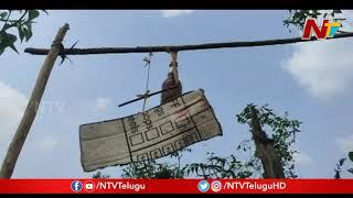Khammam Farmer Brilliant Tricks to Prevent Monkeys from destroying crops   NTV