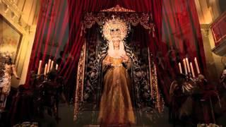 Vigilia de la Inmaculada 2015