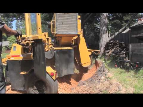 1992 vermeer 665b stump grinder demo youtube rh youtube com