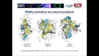 Natural product agonists of PPARγ: a review