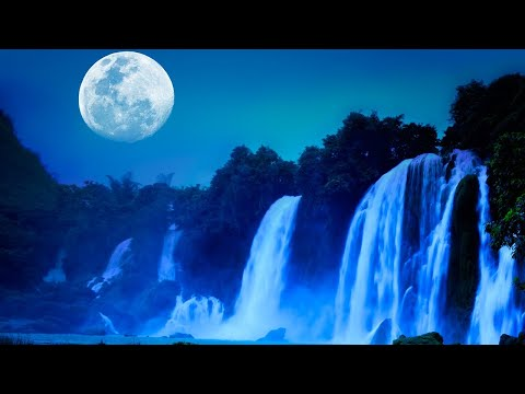Relaxing Sleep Music 24/7, Calming Music, Meditation, Deep Sleep Music, Study Music, Sleep, Insomnia