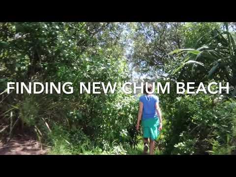 New Zealand road trip (New chum beach)
