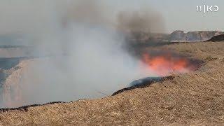 אש בכל מקום: גל שריפות ברחבי הארץ