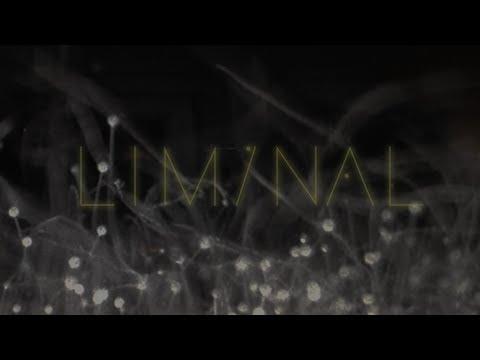 Liminal 2 (Album Stream)