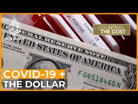 Pandemic Proves There Is Only One World Reserve Currency | Counting The Cost
