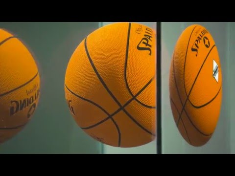 Jeff Koons' One Ball Total Equilibrium Tank (Spalding Dr. J Silver Series)