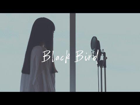 【アカペラ】Black Bird - Aimer Groovy groove