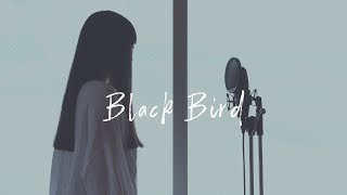 Gambar cover 【アカペラ】Black Bird - Aimer|Cover by Groovy groove