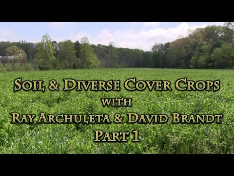 Soil & Diverse Cover Crops with Ray Archuleta & David Brandt Part 1