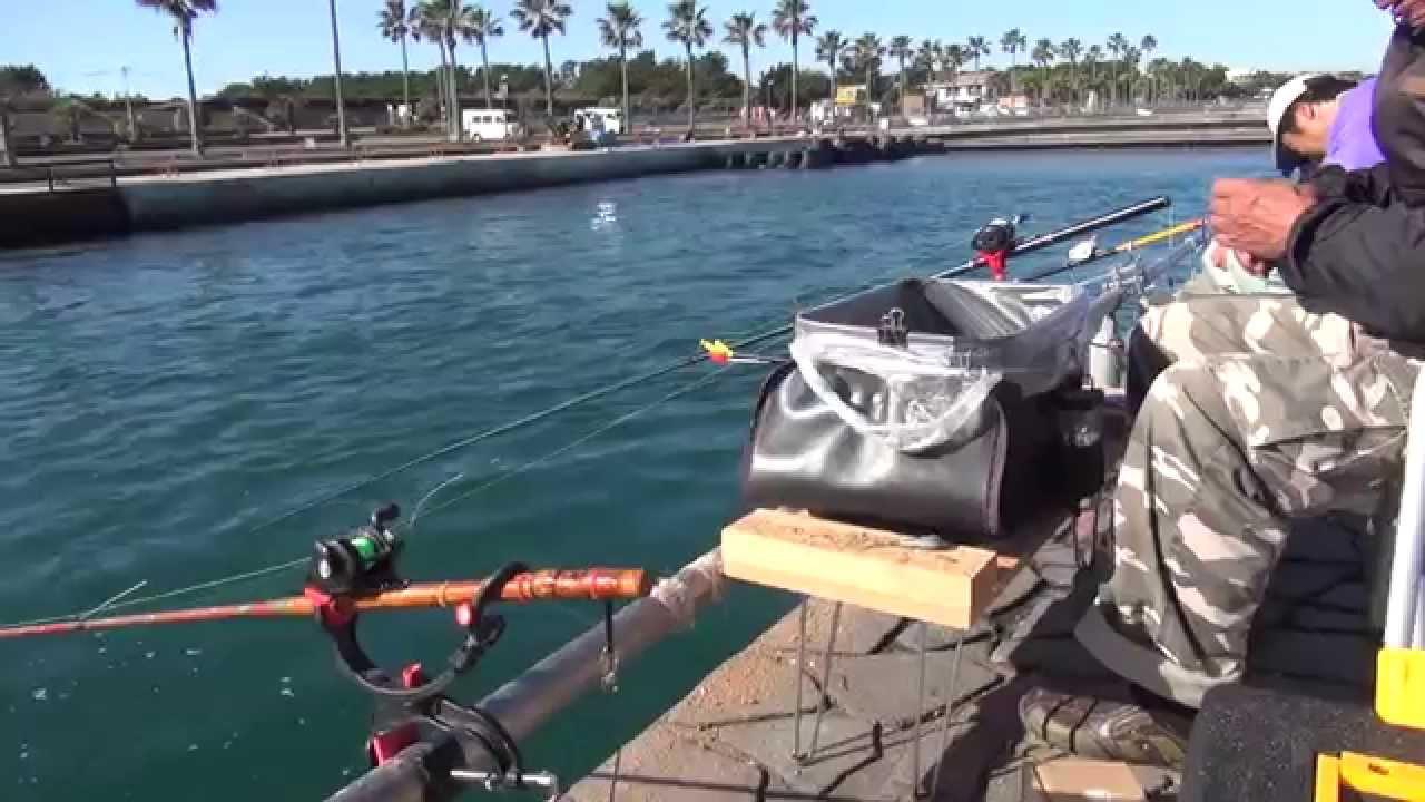 新居海釣り公園 浜名湖 浜名湖海釣り公園と新居海釣り公園!釣れる魚釣り場のポイント紹介