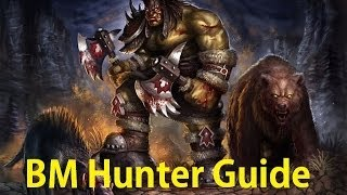 beast master pvp guide bm hunter pvp guide patch 5 4