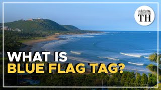 What is Blue Flag tag?
