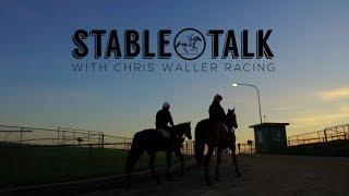 """Stable Talk"" - Weekly Preview - 21st June 2018 - Chris Waller Racing"