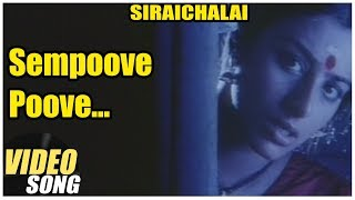 Sempoove Poove Video Song | SiraiChalai Tamil Movie | Mohanlal | Tabu | Prabhu  | Ilayaraja