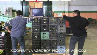 Repeat youtube video Happy Confcooperative Siracusa