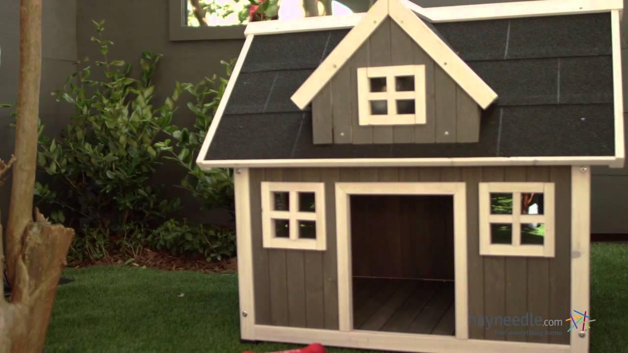 creating a pet friendly backyard hayneedle com youtube